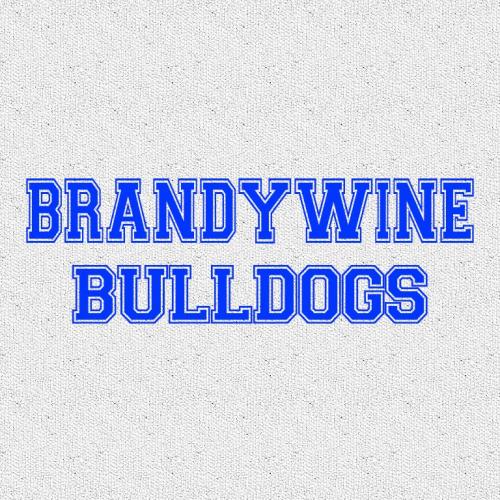 Brandywine HS